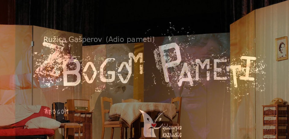 You are currently viewing ZBOGOM PAMETI